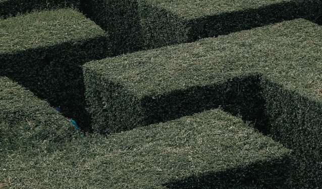 My Head is a Maze –Poem
