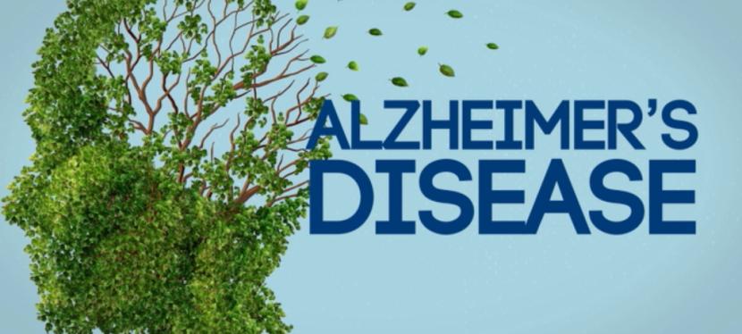 Alzheimer's Avoidance Series