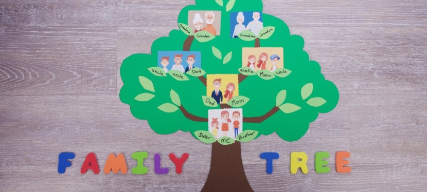 Ideas for Lockdown – Blog 6: Trace your Family Tree?