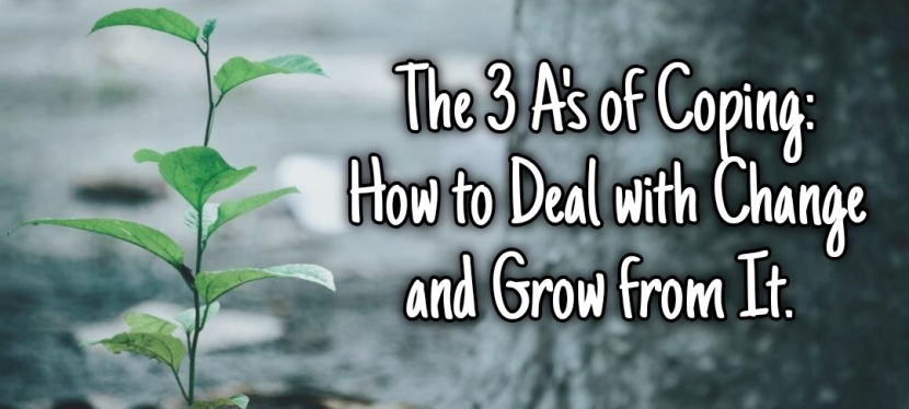 The 3 A's of Coping: How to Deal with Change and Grow From It – Anxiety Bear